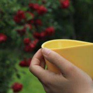 Využijete šálku Teacup v lete? Samozrejme.